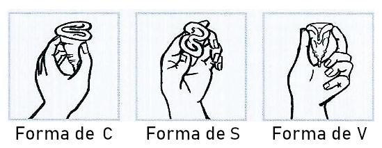 formas de doblar la copa menstrual