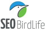 seo-birdlife