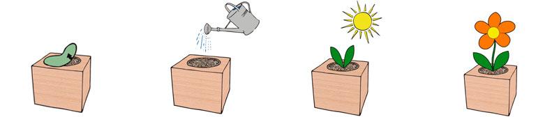 proceso ecocube