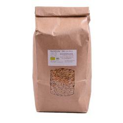 Semillas de avena para germinar ecológicas - 1 kg