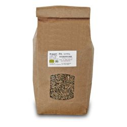 Centeno en grano ecológico, 1 kg - Eschenfelder