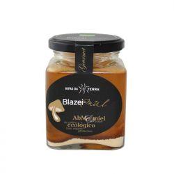 Miel de acacia con champiñón del sol