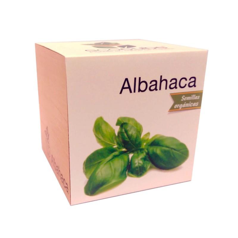 Ecocube de albahaca