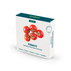 Semillas de tomate en cama de turba