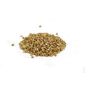 Semillas de trigo sarraceno para germinar ecológicas - Bardowick