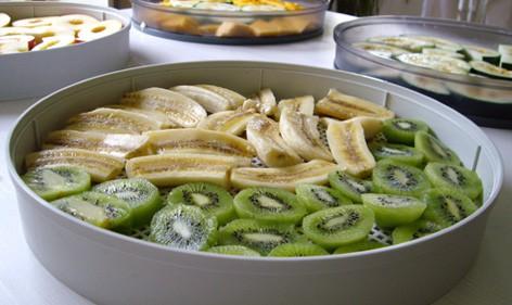 Deshidratar kiwis y plátanos con Dorrex bandeja pp