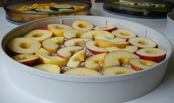 Deshidratar manzanas en Dorrex en bandeja pp