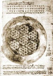 flor de la vida de Leonardo da Vinci