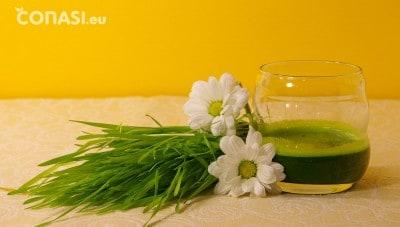 Jugo hierba de trigo