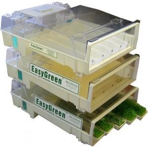Tres germinadores Easygreen apilados