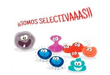 bacterias-en-el-colon