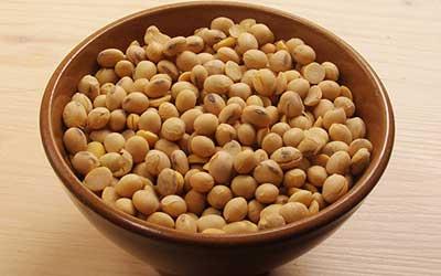 SOJA SI, SOJA NO ¿es saludable la soja?
