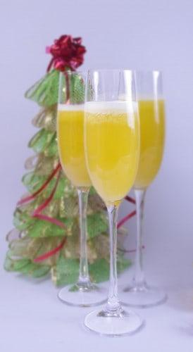 Cava de frutas hecho con extractor lento Versapers