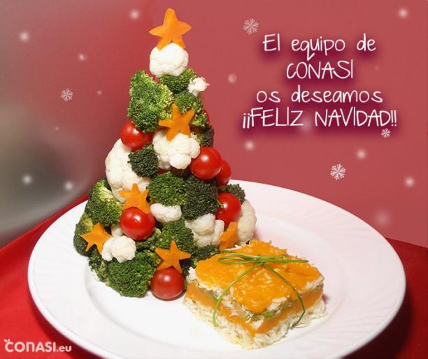 El equipo de Conasi os deseamos ¡Feliz Navidad!