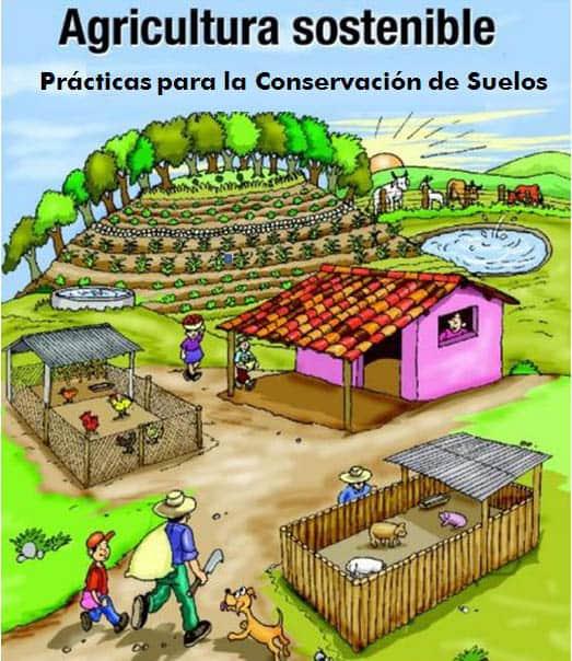 Agricultura sostenible. Imagen procedente de http://zoncuantla.org