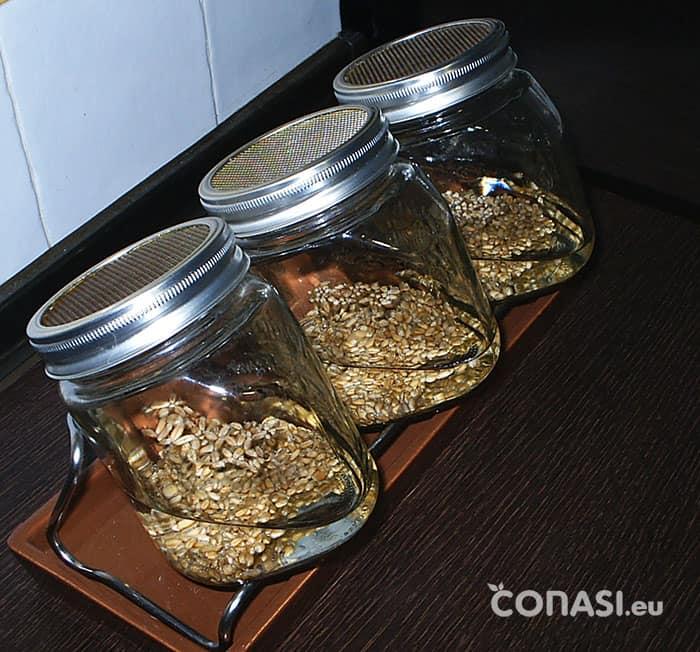 Cereales en remojo