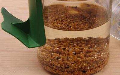Por qué remojar los cereales