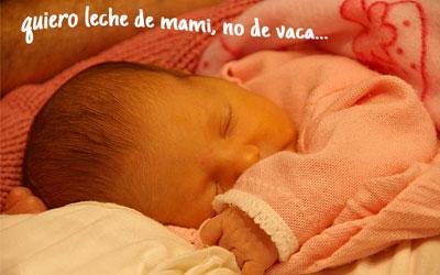 Lactante soñando con la leche de su madre, nada de leche de vaca