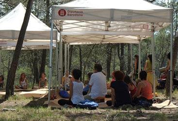Numerosas actividades en el bosque