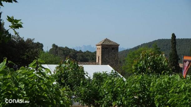 Castellnou con Montserrat