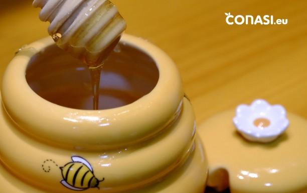 Miel de acacia ecologica