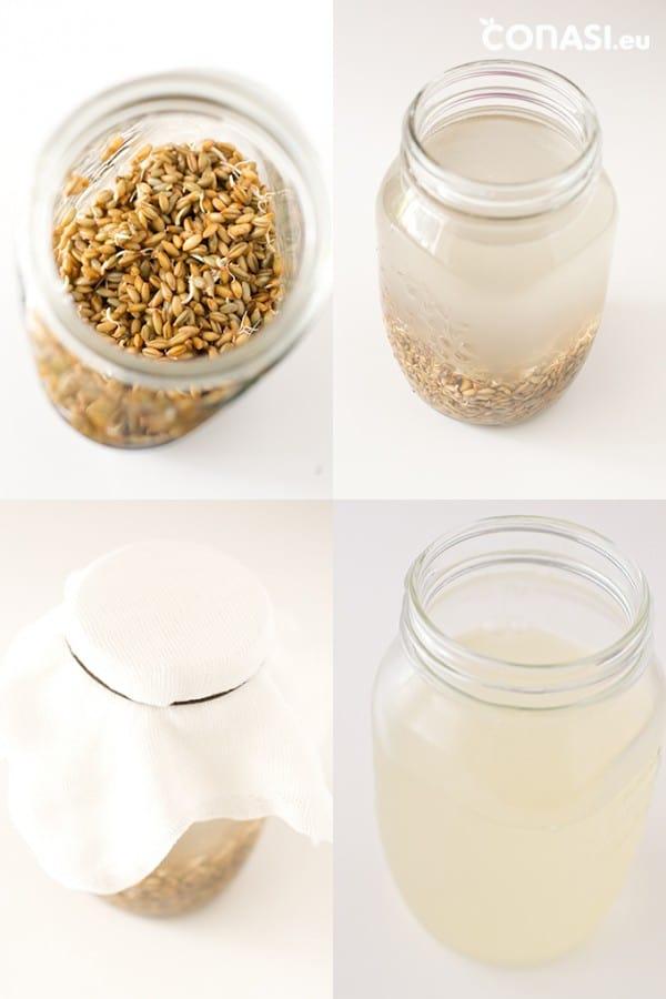 Así se hace el agua enzimática o rejuvelac