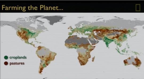 Mapa representativo de las zonas de cultivo del mundo