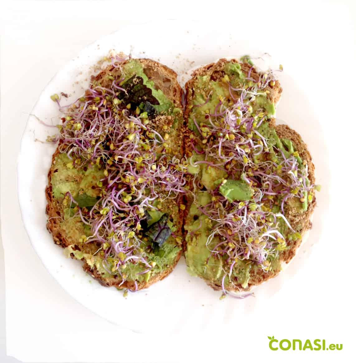 Desayuno SEN: Tostadas con aguacate y germinados