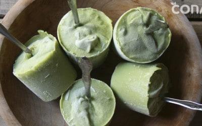 Helado vegano sin azúcar
