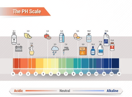 Ph Drinking Water Level