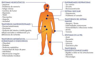 intolerancias y alergias alimentarias