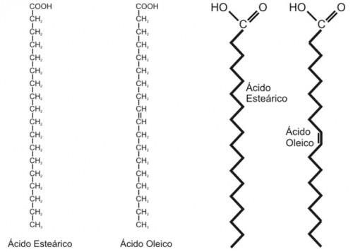 estructura-lipidos