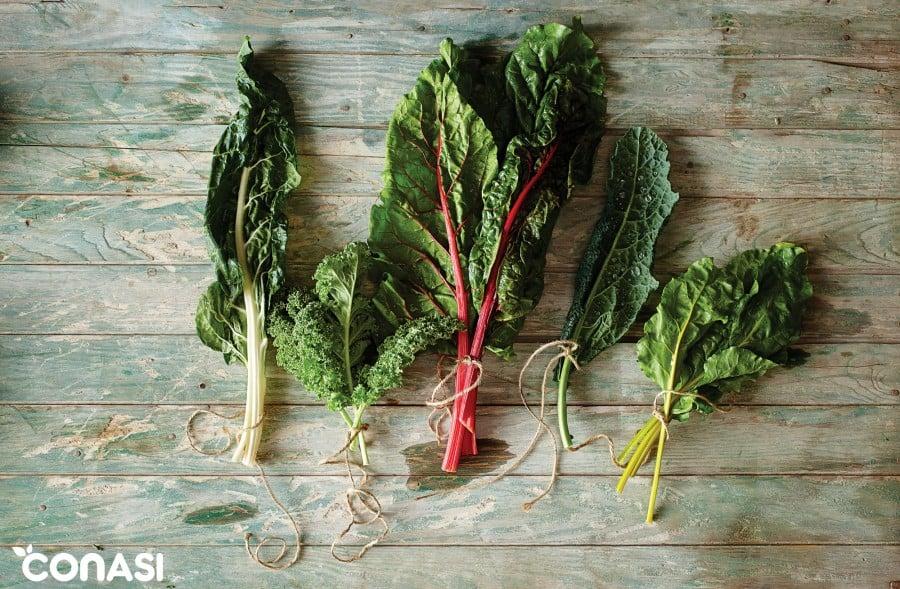 hojas-verdes-alimentacion-saludable