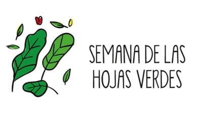 Semana 1, revitaliza tu vida - Hojas verdes