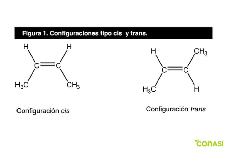 como se forma las grasas trans e hidrogenadas