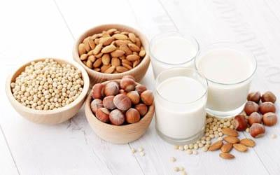 alternativa leche animal