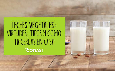 Haz tu propia leche vegetal casera