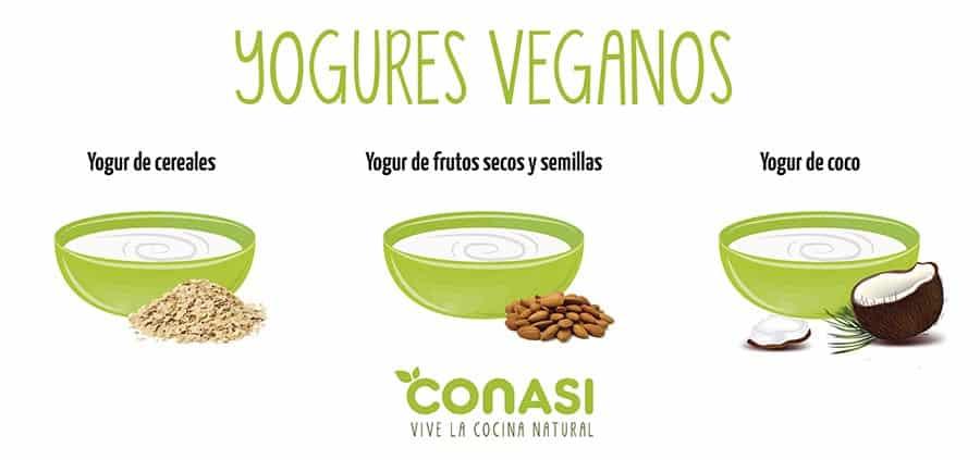 Otros tipo de yogures veganos