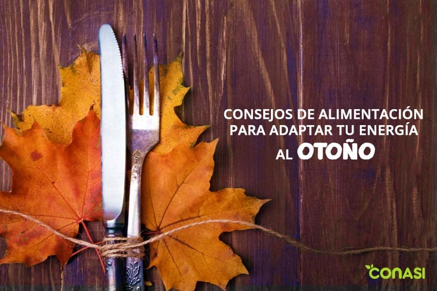consejos de alimentacion para adaptar tu energia al otoño