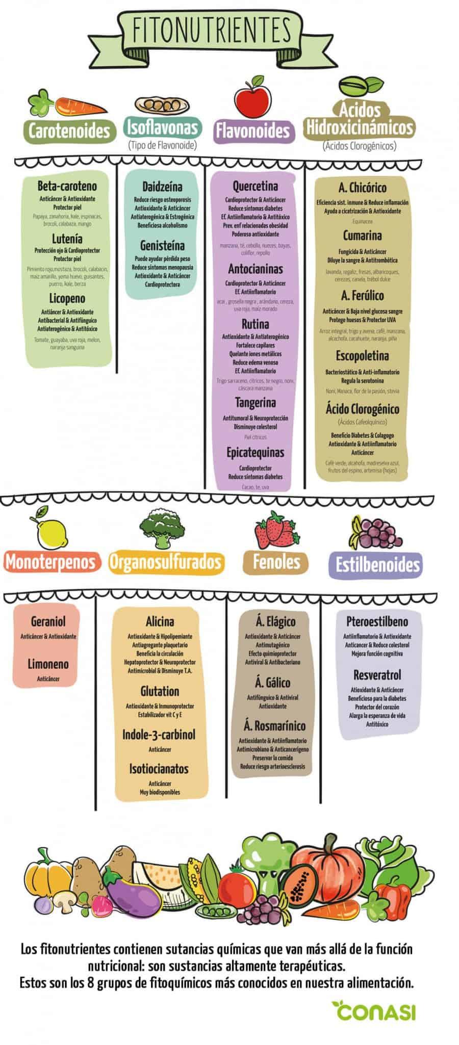 Fitoquimicos o fitonutrientes