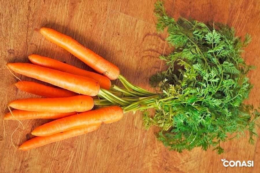zanahorias nutrientes