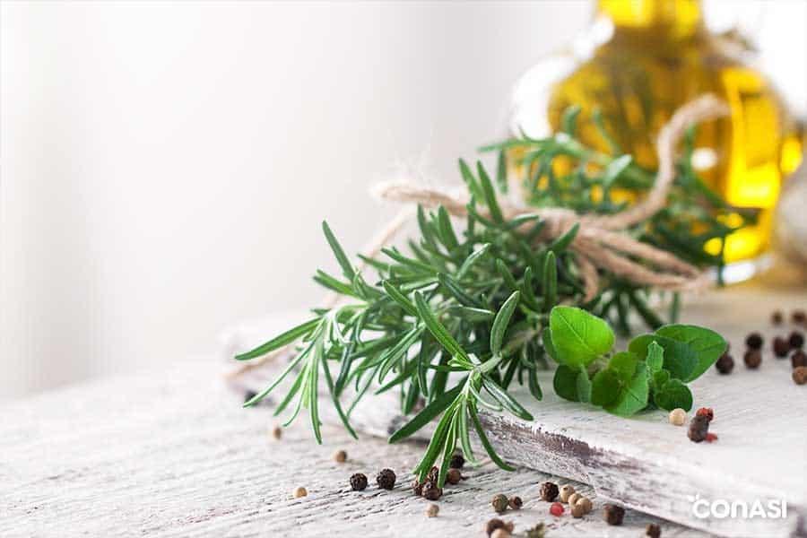 Hierbas para usar en macrobiótica en primavera