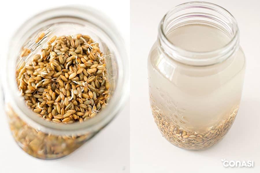 Cómo mejorar la digestibilidad de los cereales