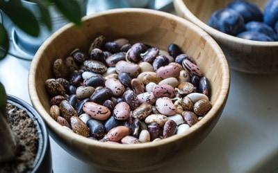 Legumbres: grandes nutridoras del puchero