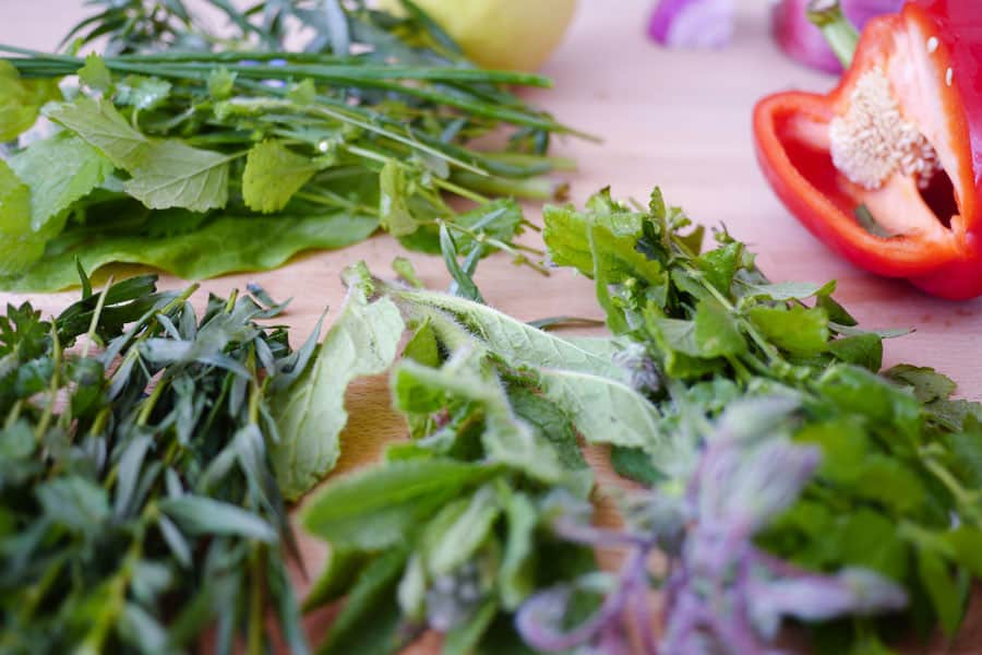 Hierbas frescas para el caldo de verduras casero - como hacer caldo