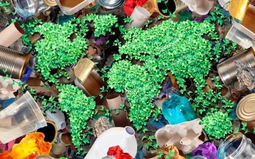 ¿Son los plásticos reciclables, biodegradables o c...