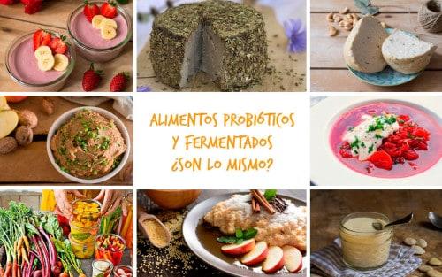 Alimentos probióticos y fermentados: ¿son lo mismo...