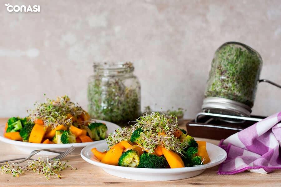 Salteado corto de verduras en dos platos con germinados al fondo