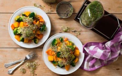 Salteado corto de verduras de otoño - Showcooking Biocultura Madrid 2019
