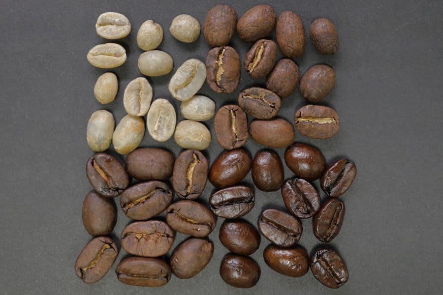 Diferentes granos de café ecológico: verde, tostado y torrefacto
